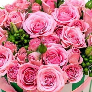 franshiza-15-roz.jpg