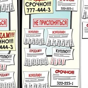 franshiza-alekseev-reklama.jpg