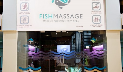 franshiza-fish-massage-1.jpg