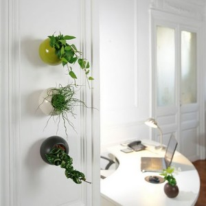 franshiza-flowerbox-gallery-1.jpg