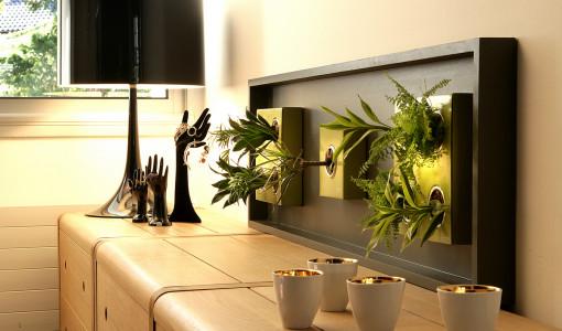 franshiza-flowerbox-gallery-2.jpg