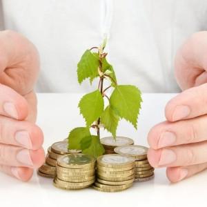 franshiza-investmoney-1.jpg
