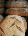 franshiza-le-pain-quotidien-1.jpg