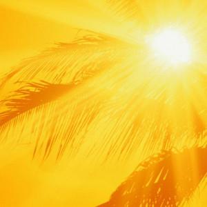 franshiza-solncetur.jpg
