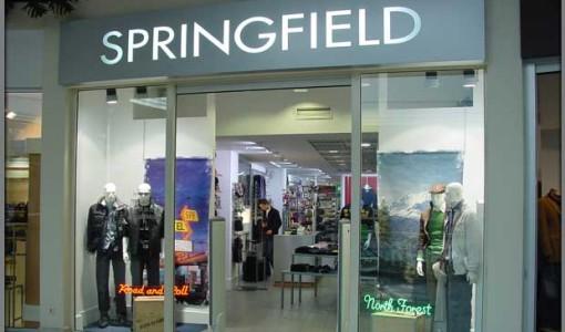 franshiza-springfield-1.jpg