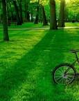 franshiza-star-bike-coffee.jpg