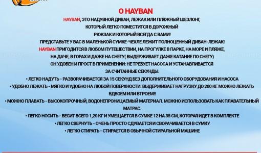 franshiza-hayban-2.jpg