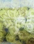 franshiza-eilat-flowers-2